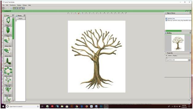 Screenshot of Blank Gardenia, Family Tree Template