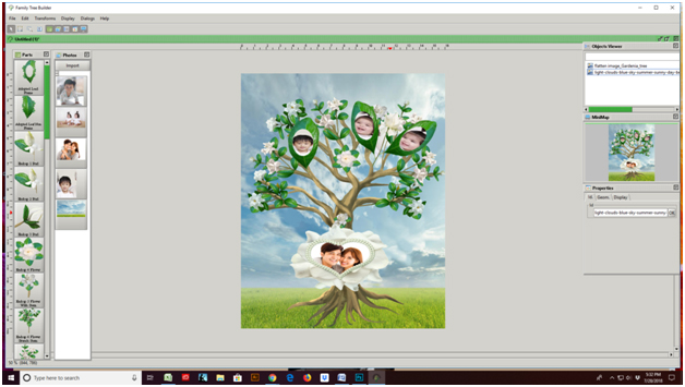 Gardenia Tree Finished, Family Tree Template